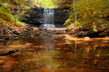 wooded: Very rich colors in this beautiful wooded waterfall scene.