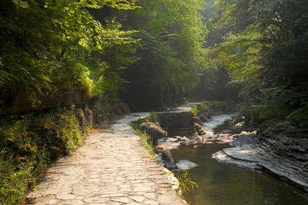 Sunlight highlights the way n this beautiful scenic stone walkway.