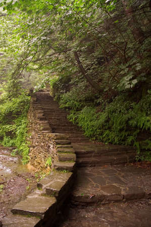 A stone staircase leads you up along the trail to a scenic waterfall beyond.