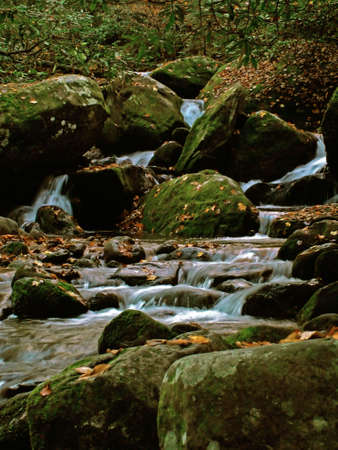 tumbling: Moss covered Rocks in a stream