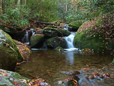 Small cascade with moss covered boulders deep in the woods of North Carolina.