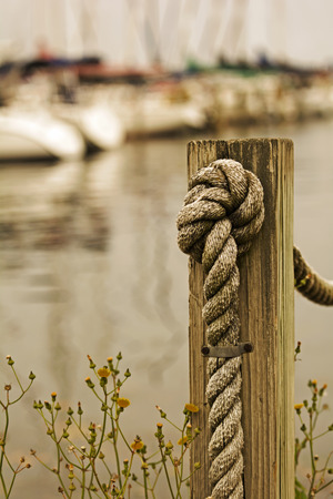 out of focus: A rope going through a wooden post with  a knot tied in it  Yellow wildflowers are growing around the post  Focus is on the rope and post and the boats in the background are out of focus