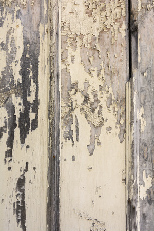 overlays: Close up high resolution photo of an old barn with peeling paint   Great for backgrounds and overlays to add a grungy texture to your photos