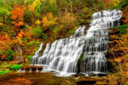 Hector falls  in New York surrounded by trees and plants with peak fall colors  A beautiful roadside waterfall just north of Watkins Glen