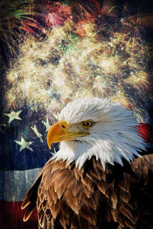 Composite photo of a Bald Eagle with a flag and fireworks in the background  Given a grunge overlay for a nice aged effect   Nice patriotic image for Independence Day, Memorial Day, Veterans Day and Presidents Day