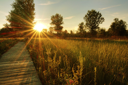 ohio: A beautiful warm summer sunset view along a long boardwalk as it winds through a midwest prairie in northwest Ohio   Stock Photo