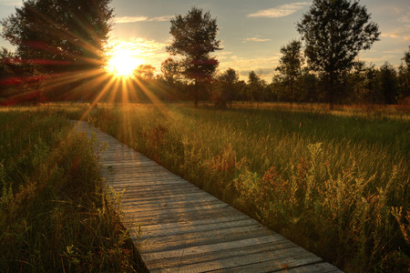 A beautiful warm summer sunset view along a long boardwalk as it winds through a midwest prairie in northwest Ohio   Stock Photo