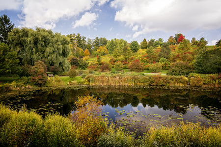 A beautiful autumn scene with a pond reflecting the vibrant colors of the trees and plants   Stop at any of the benchs and enjoy the scenic view  photo