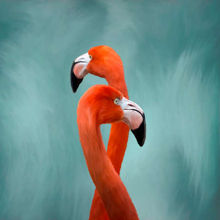Oil painting of elegant Flamingo birds standing tall against a soft  blue and white background.