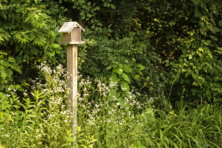 feeders: A small bird house and feeder in a flower garden setting. Stock Photo