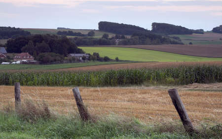 Landscape with the fields behind a rugged fence in sunset Stock Photo - 305272