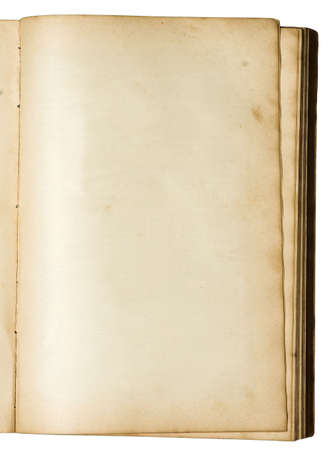 Clean empty page of a hundred years old book