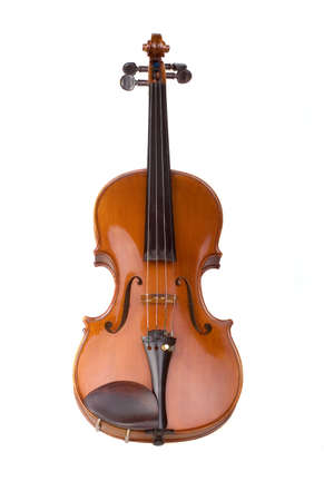 violine on the white background