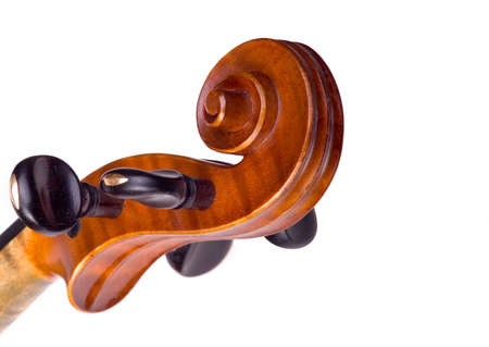 laque: violine head close-up on the white background