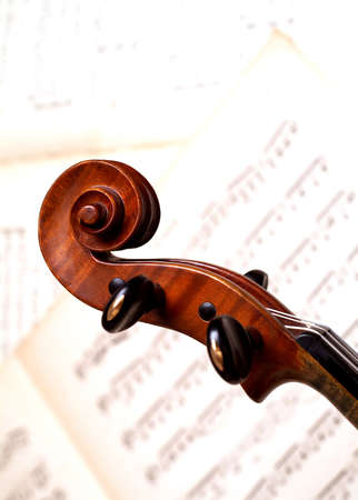 violine head close-up over music notes
