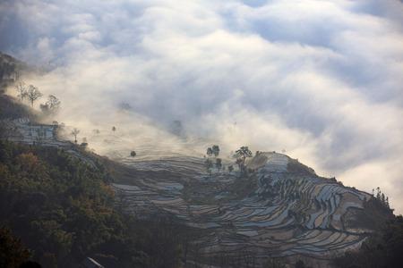 yunnan: Terraces in Yunnan, China Stock Photo