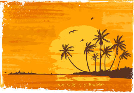 Sunset. Tropical beach. Stock Vector - 2127095