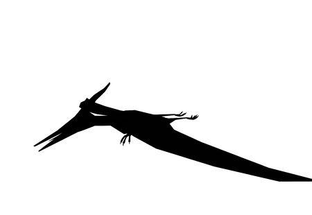pterodactyl: Pterodactyl