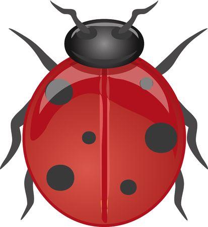 crawlies: Ladybug