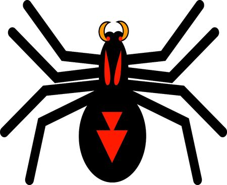 arachnoid: Black and red spider Stock Photo