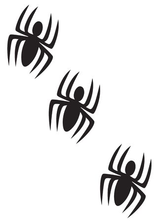 Spiders on a white background