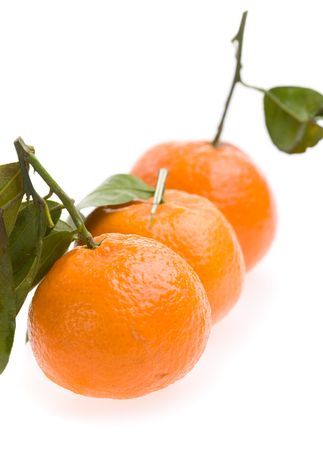 three tangerines macro isolated on white background photo