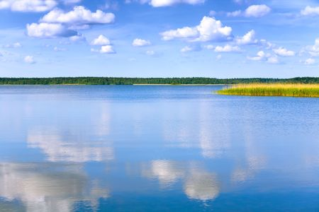 lake with cane, sky and clouds, summer landscape Stock Photo - 3249680