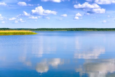 lake with cane, sky and clouds, summer landscape Stock Photo - 5513565