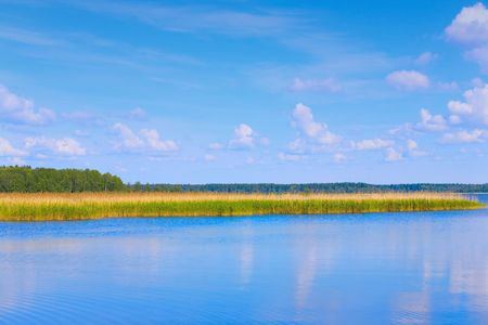 lake with cane, sky and clouds, summer landscape Stock Photo - 5513567