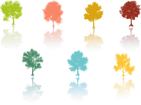 reflection: Colored tree reflection Vector