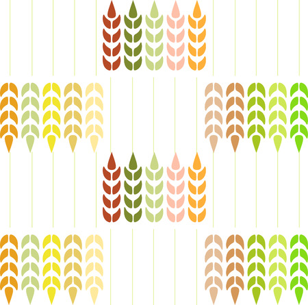 spikes: Wheat Pattern on white background.