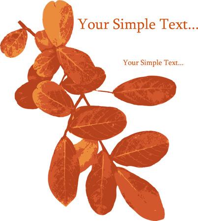quercus: Red leaves Autumn (Lagerstroemia_indica_Crape_Myrtle). Vector.