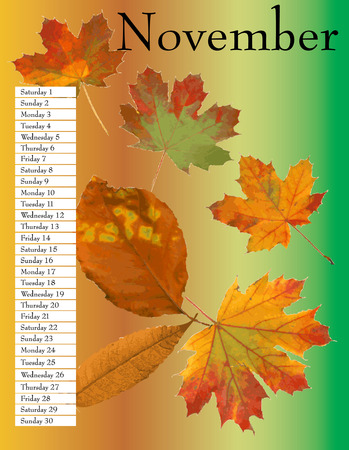 calendar: Calendar November.