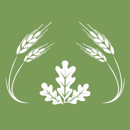 oak leaf: Autumn logo. Illustration