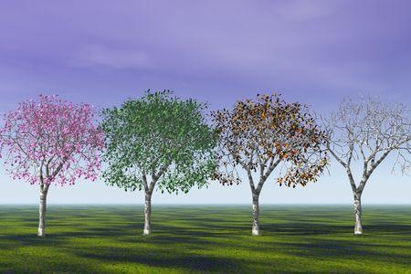 Four Seasons -  Spring Summer Autumn Winter Stock Photo - 3655712