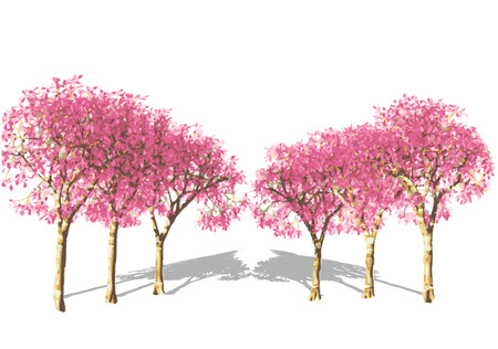mauve: Pink Tree in spring. Illustration
