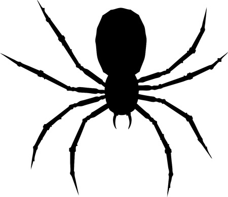 One arachnid isolated on white background. Vector