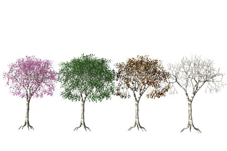 Four seasons. Stock Photo - 6989266