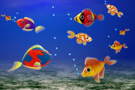colores: colores fishes underwater Stock Photo