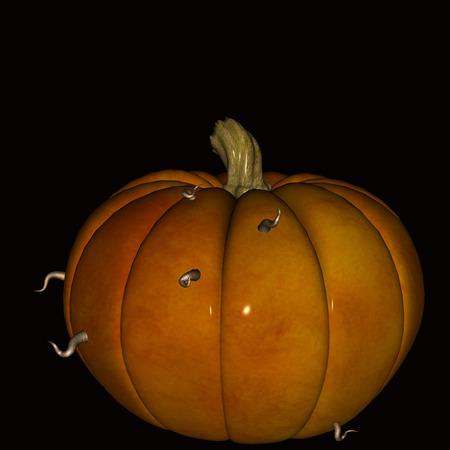 smilling: Halloween  Pumpkin on black background eaten away by worms. Stock Photo