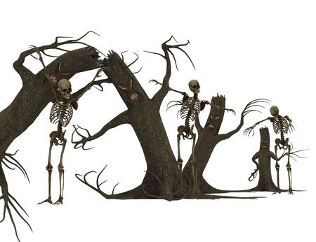 Scary Tree. photo