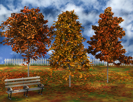 Scene of autumnal park with book on bench. photo