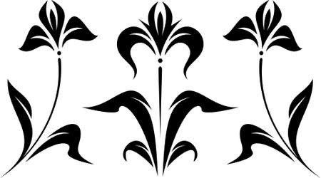 iris flower: Original Vector Floral Ornament