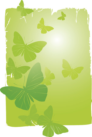 Vector Background - Butterflies Stock Vector - 4960817