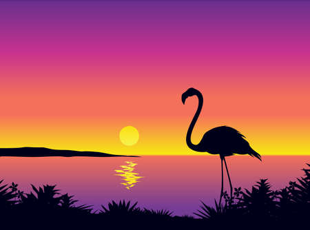 Beautiful coastline view with flamingo Vector