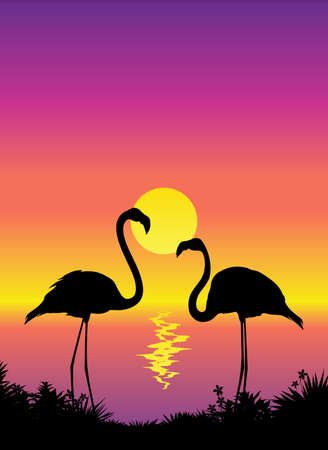Tropical scene view with flamingos Vector