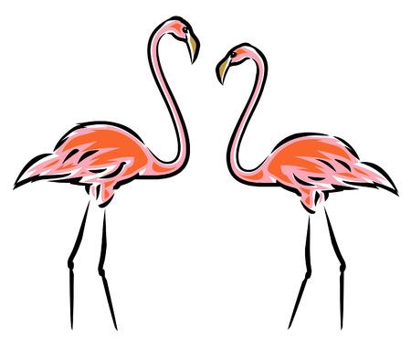 flamingi: Pink Flamingos (Vector) Ilustracja