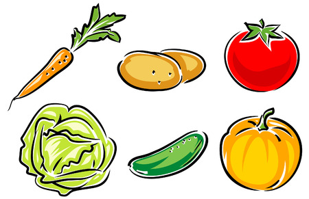 pumpkin tomato: Vegetables Vector Illustration Illustration