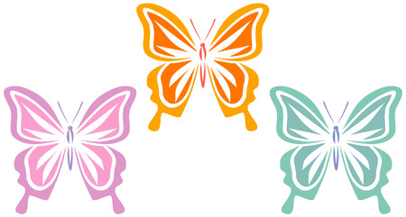 exotic butterflies: Butterflies (Vector)