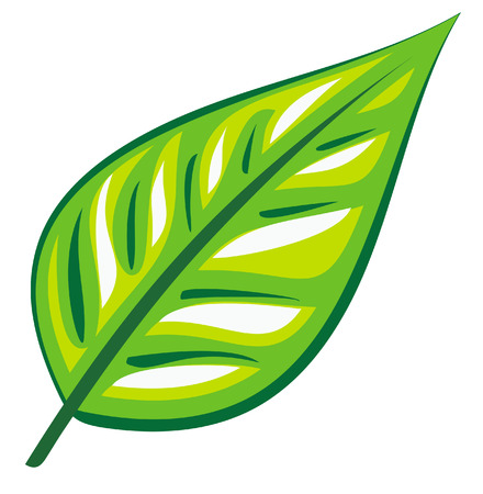 plantlet: Green leaf (Vector)